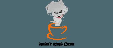 Night King Cafe by Best Professional Branding & Logo Design Company in Mukkam, Calicut, Kerala. Shab Solutions is a Top Branding & Logo Design company in calicut, mukkam, Kerala, India